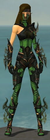 File:Assassin Elite Kurzick Armor F dyed front.jpg