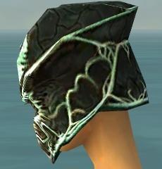 File:Warrior Elite Luxon Armor F dyed head side.jpg