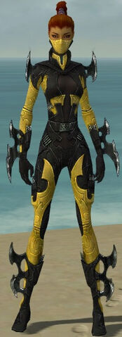 File:Assassin Kurzick Armor F dyed front.jpg