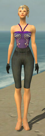 File:Mesmer Ascalon Armor F gray arms legs front.jpg
