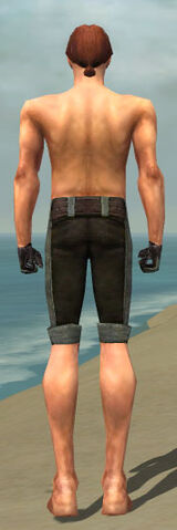 File:Mesmer Tyrian Armor M gray arms legs back.jpg
