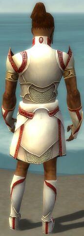 File:Paragon Asuran Armor M dyed back.jpg