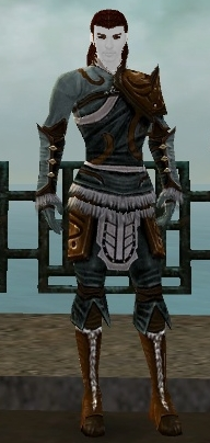 File:RH-Hero-Privaron Armor.jpg