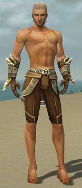 Ranger Asuran Armor M gray arms legs front