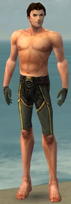 File:Mesmer Asuran Armor M gray arms legs front.jpg