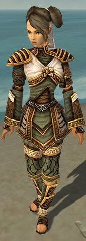 File:Monk Elite Canthan Armor F gray front.jpg