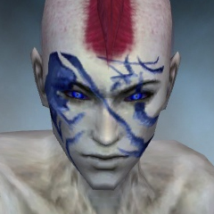File:Necromancer Kurzick Armor M dyed head front.jpg
