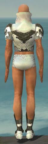 File:Paragon Elonian Armor M gray chest feet back.jpg