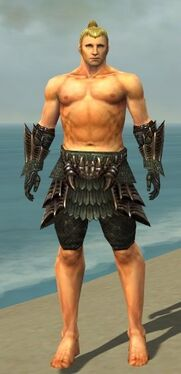 Warrior Elite Dragon Armor M gray arms legs front
