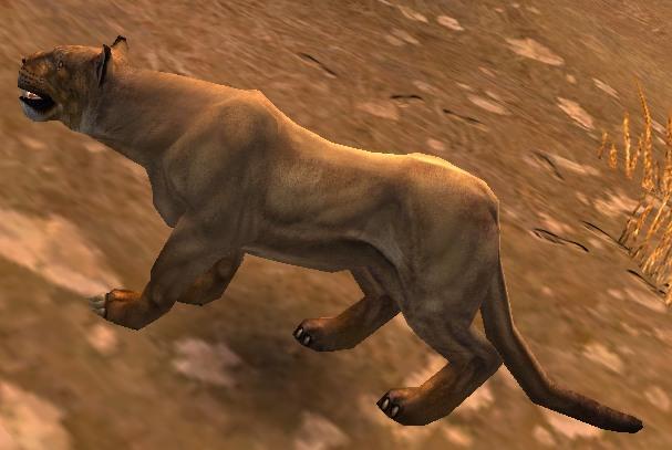 File:Lioness.jpg