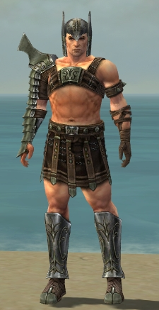 File:Warrior Elite Gladiator Armor M gray front.jpg
