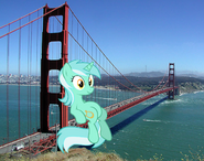 113201 UNOPT safe lyra ponies-in-real-life sitting golden-gate-bridge traffic