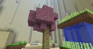 77770 - fluttershy fluttertree Minecraft tree
