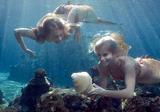 Lyla And Sirena Found A Seashell
