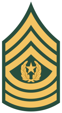 File:CSM (USA).png