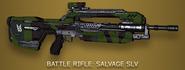 H4 Skin Salvage