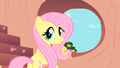Fluttershy Hearth Shape.png