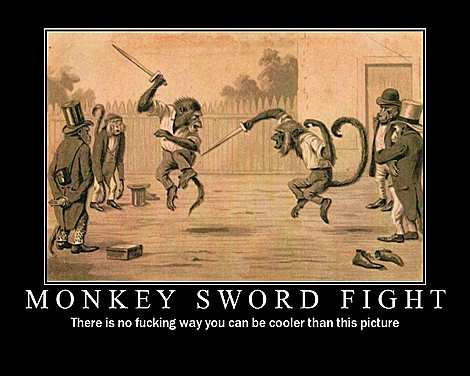 File:Monkey fight.jpg