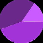 Demographic Chart - Visits