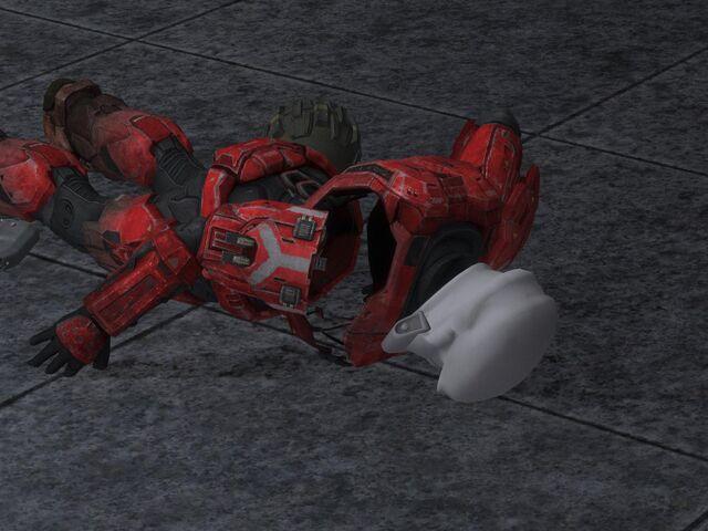 File:Armor bug.jpg