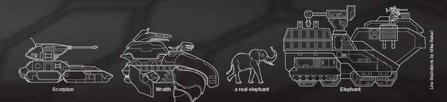File:ElephantSizeComparison.jpg