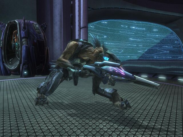 File:Halo Reach Jackal Sniper.jpg