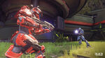H5G Multiplayer-Warzone Apex7-15