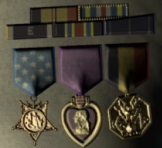 File:Hood medals.png