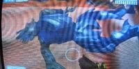 Blue Jackal