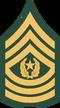 UNSC-A Command Sergeant Major