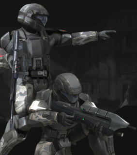 Halo Conflict