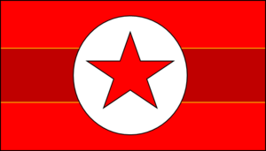Koslovic Party Flag