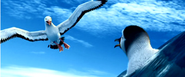 Albatrossdeletedscene