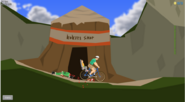The kokiri shop