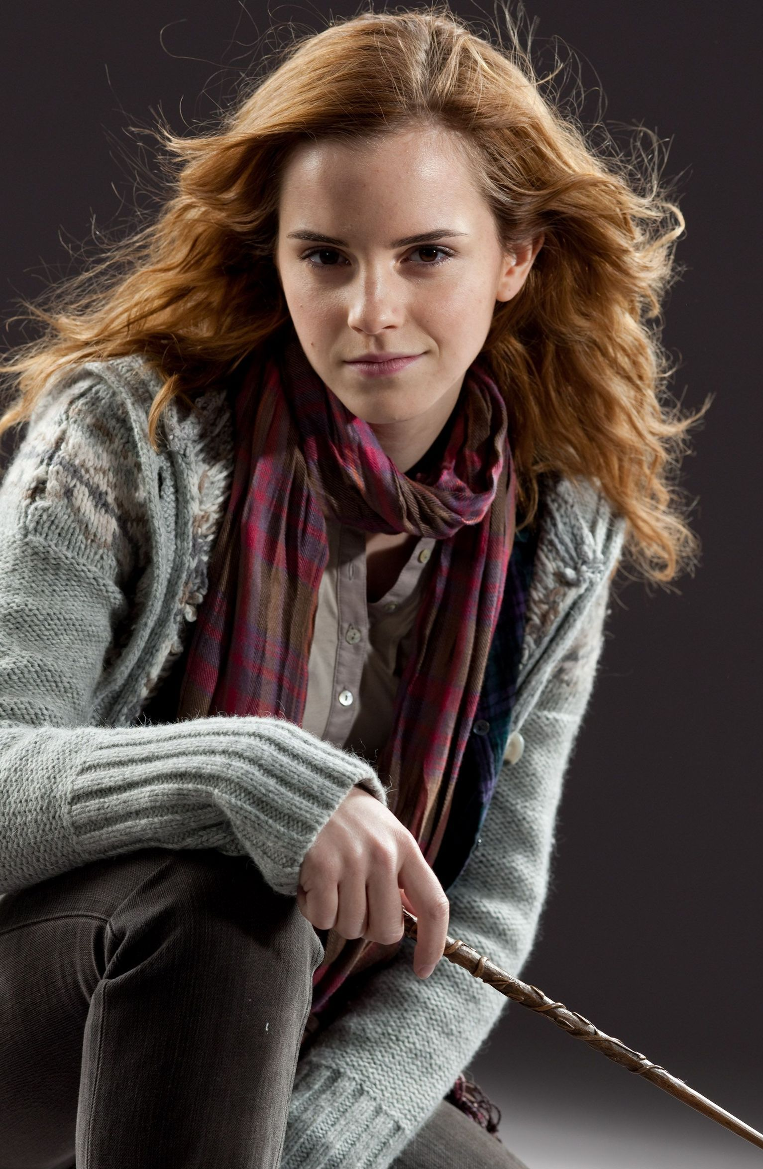 Hermione granger harry potter wiki fandom powered by wikia for Harry potter and the deathly hallows wand