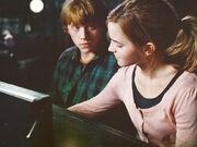 Hermionefaghhd