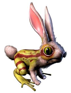 Frog-Rabbit WBoS