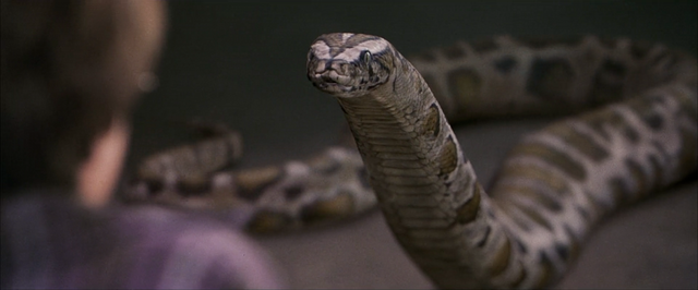 File:Harry-Snake-PSF.png