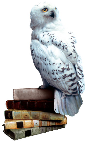 File:Hedwig books.png