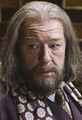 Young Albus Dumbledore.JPG