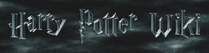 New harry potter wiki logo