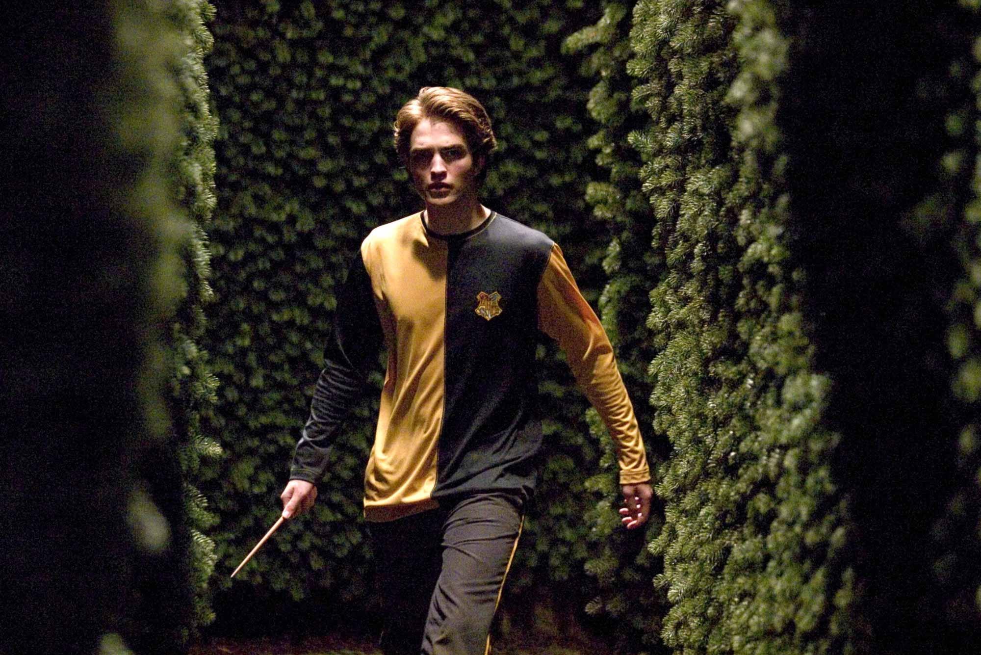 24 juin wiki harry potter fandom powered by wikia - Harry potter et la coupe de feu cedric diggory ...