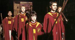 Gryffindor team.jpg
