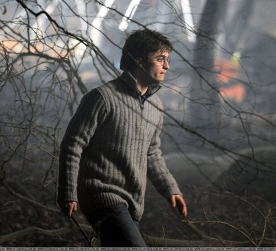 File:Harry In Forest.jpg