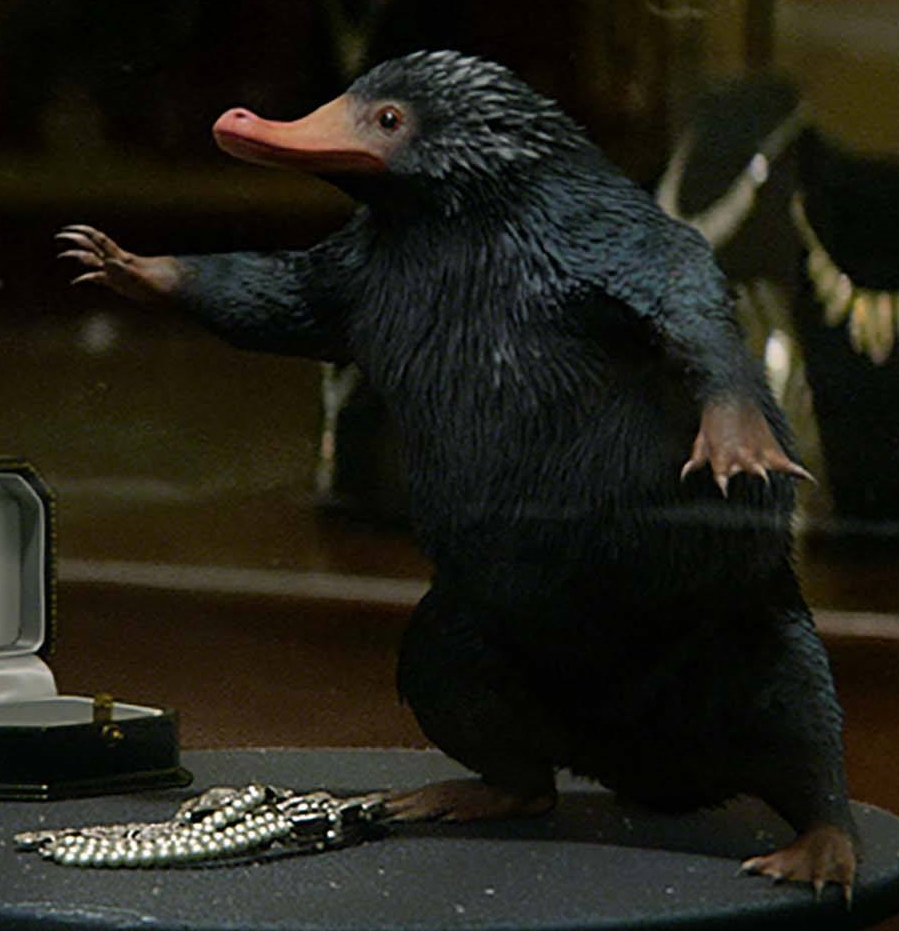 Niffler from Fantastic Beasts