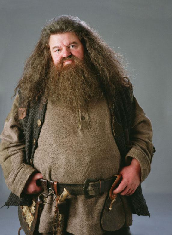 Hagrid The Unsung Mother Mugglenet