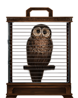 File:Brown-owl-lrg.png