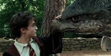 Harry Potter Buckbeak
