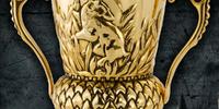 Hufflepuff's Cup