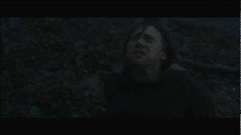 Ron Destroys the Locket - Harry Potter and the Deathly Hallows Part 1 HD